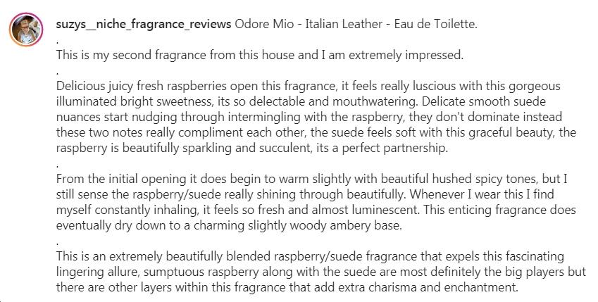 Odore Mio Italian Leather Suzy Review