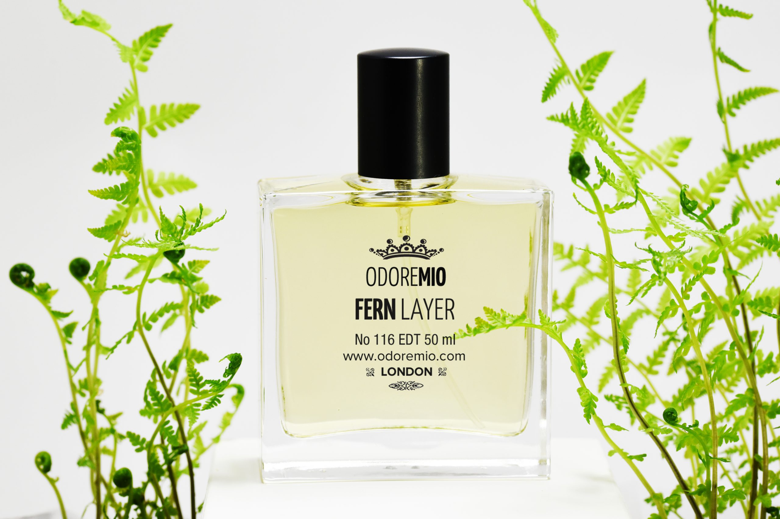 Fern Layer Perfume Odore Mio
